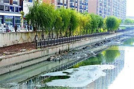 2020年底前广东全省将整治43个黑臭水体