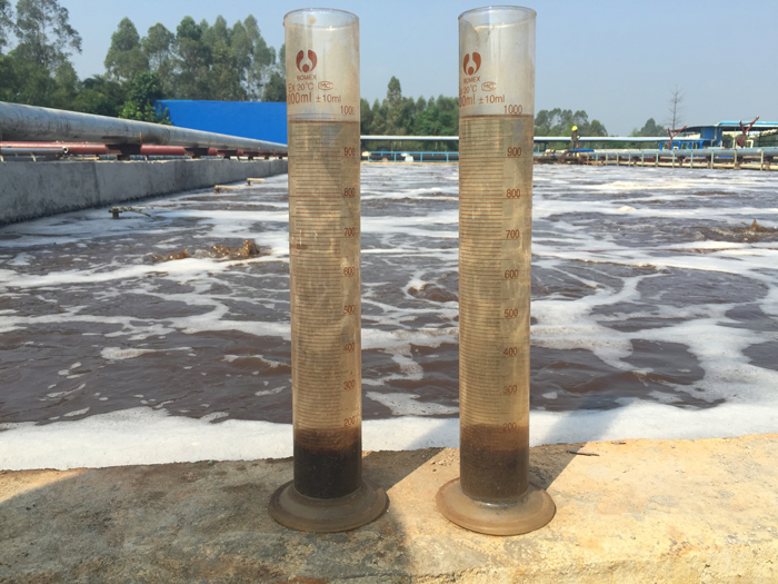 废水处理中活性污泥生物观测的指示作用