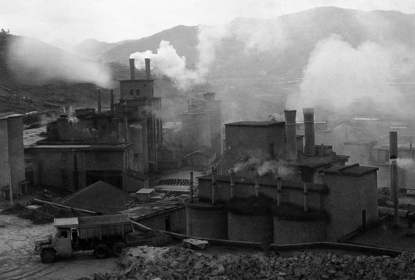 """中国为什么提""""绿水青山就是金山银山""""?"""